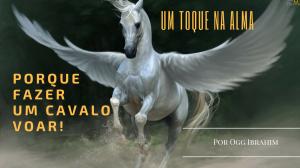 capa-video-cavalo